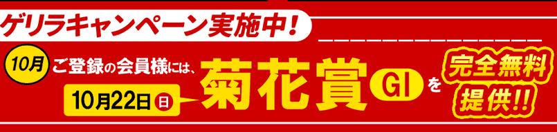 菊花賞(G1)」の無料情報