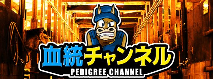 血統チャンネル