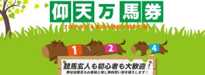 ステップ競馬(STEP競馬)の口コミ・評判・予想の的中率を調査