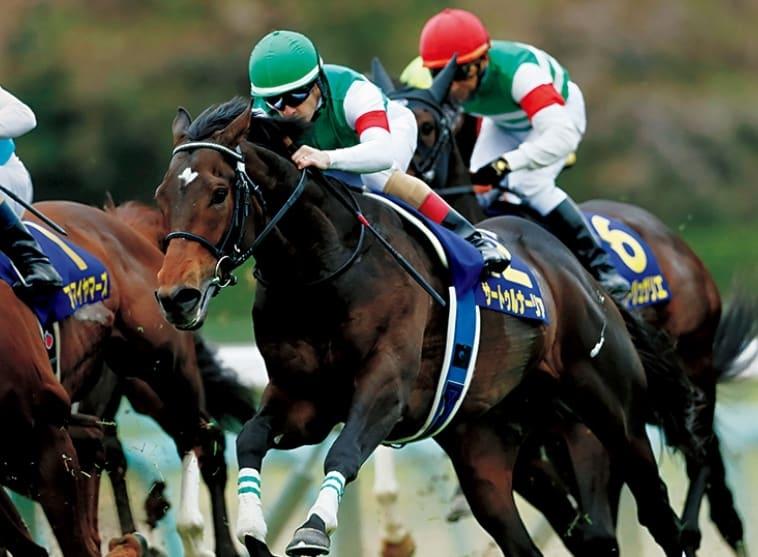 小宮城の馬主馬券術 オーナー・サイダーは本命馬を探す