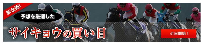 競馬最強の法則WEB 無料情報が豊富