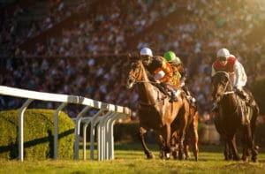 競馬予想の初心者に単勝をオススメしたい3つの理由と3つの注意点