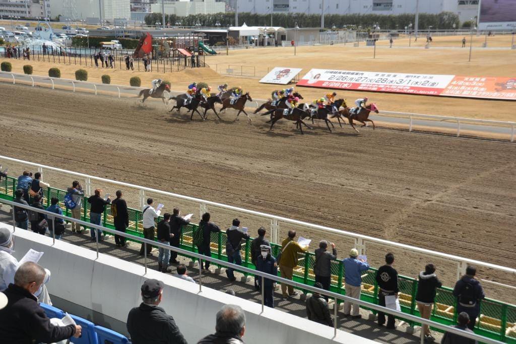 法律違反の悪徳競馬予想サイトの特徴その2「JRAや競馬関係者を名乗る」