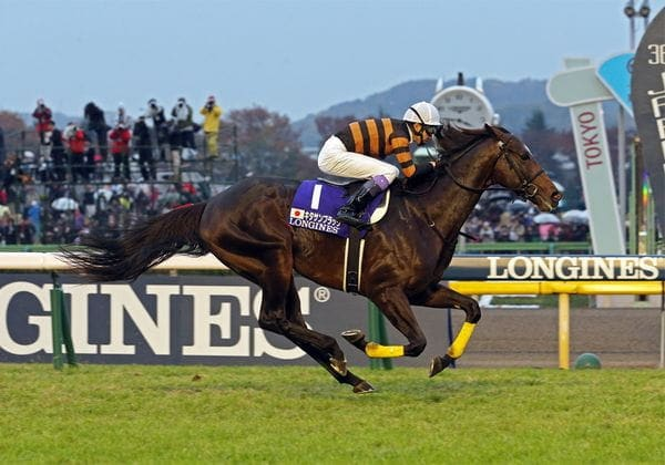 東京競馬場で開催されている重賞レース