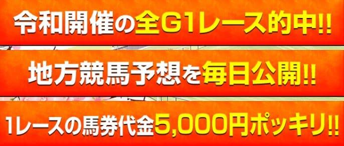 令和ケイバ 馬券代 5,000円