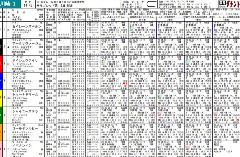 競馬グラントの出馬表PDFが見やすい
