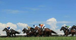 夏競馬の予想が難しい人必見!最強の対策方法4選