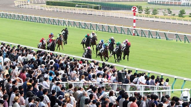 競馬展望プラスの中央競馬レース展望