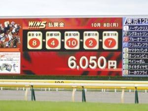 競馬でWIN5を予想する方法は?勝つための4つの予想方法を紹介