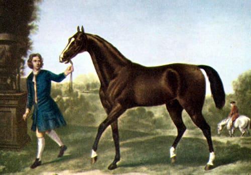 血統をたどっていくと3頭の馬に行き着く