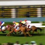 競馬予想サイト 収入