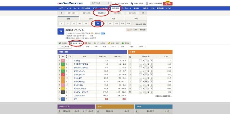 netkeiba.com オッズ