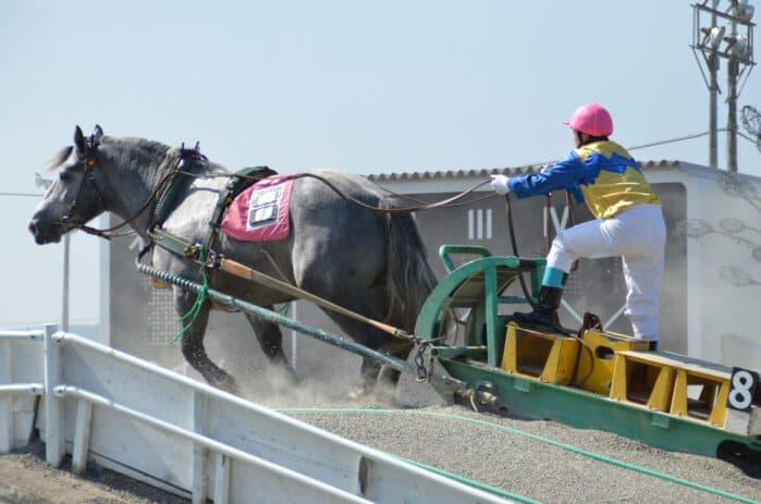 ばんえい競馬の過酷すぎる競争