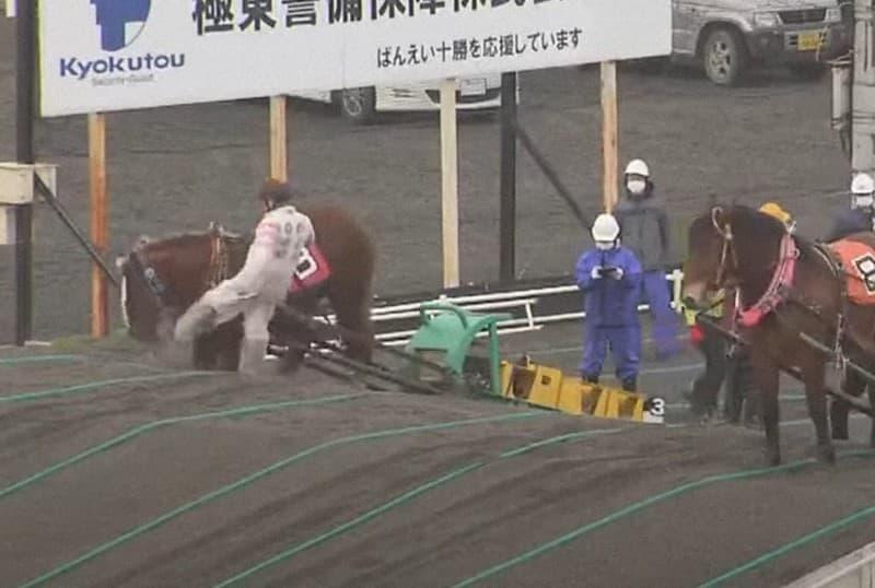 ばんえい競馬の虐待