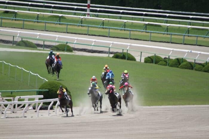 地方競馬の開催制限と回数