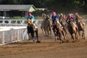 地方競馬の開催日程と絶対に見るべき人気レース5選